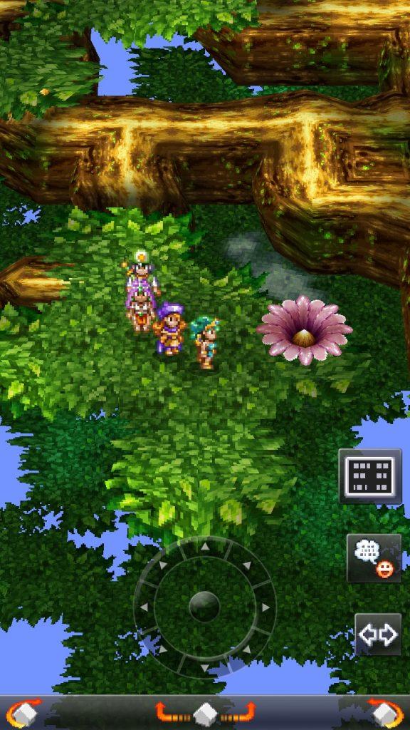 世界樹の花の場所